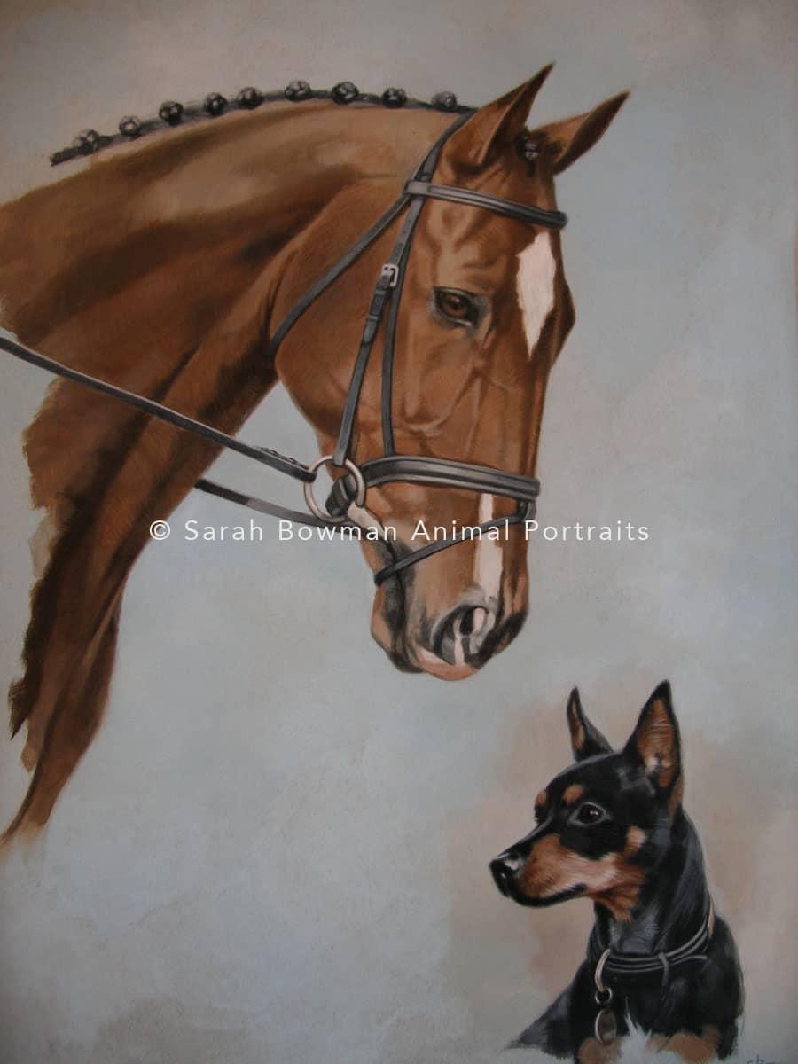 horse detail portrait