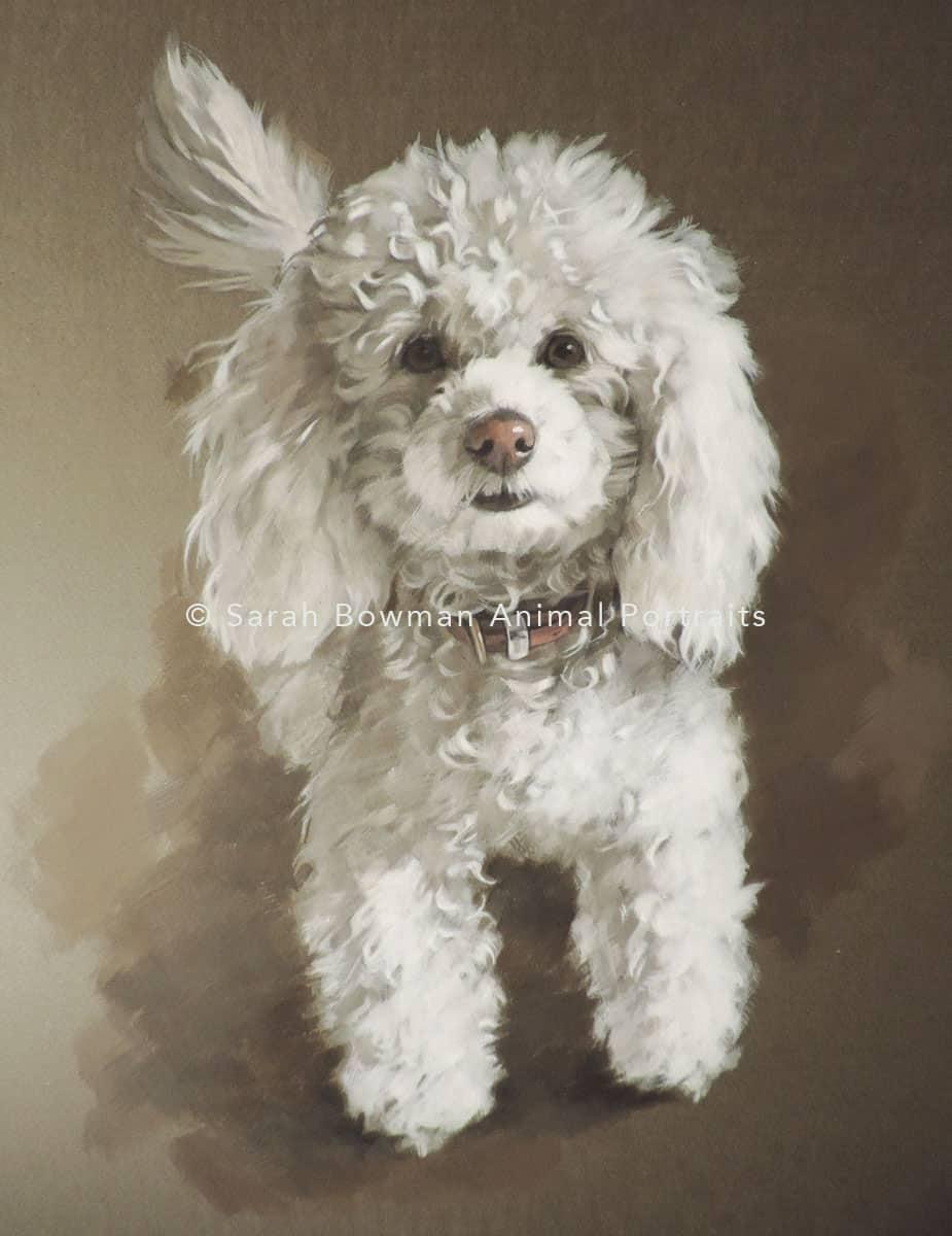 Animal portrait artist in gouache and acrylic