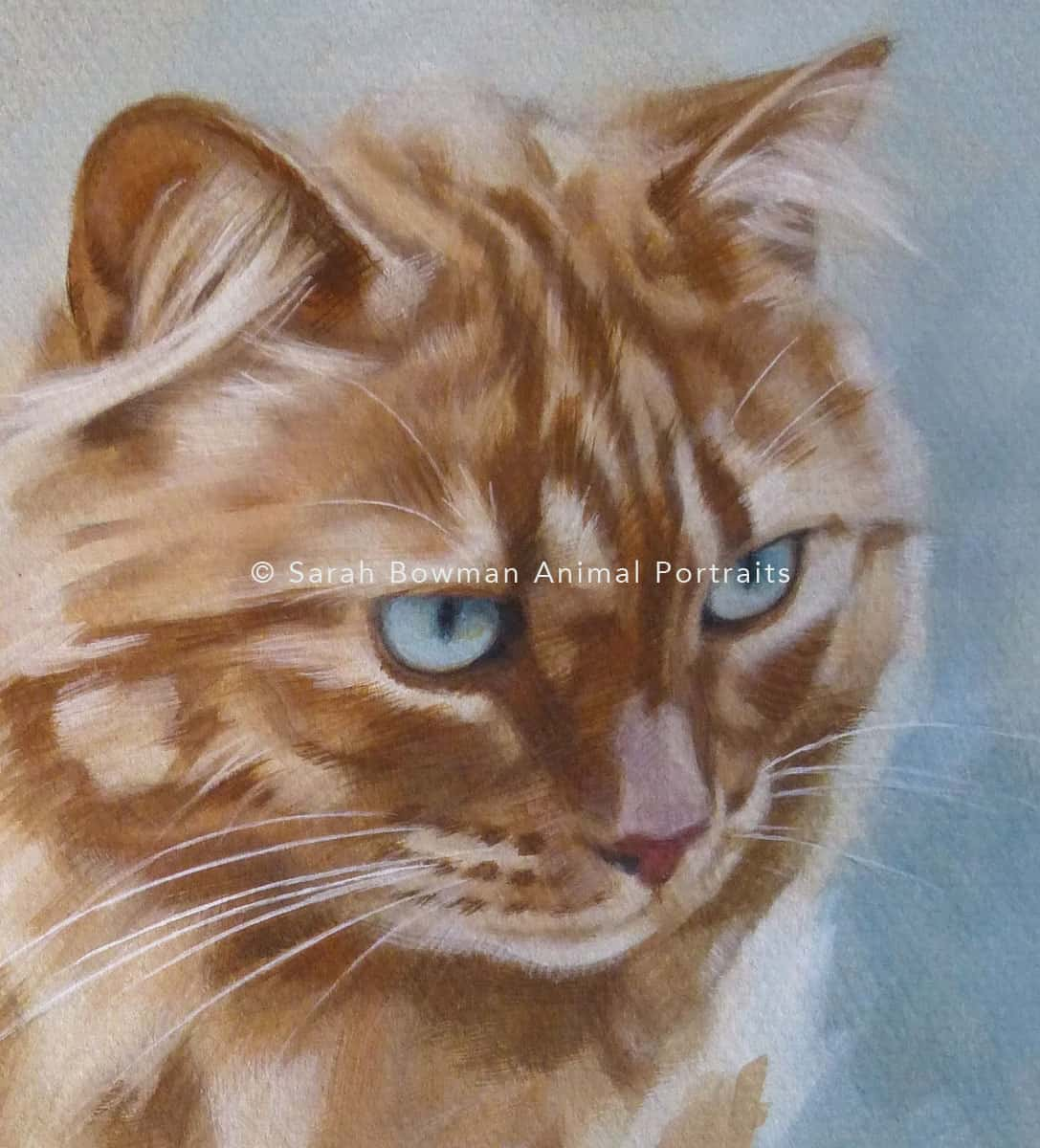 cat portrait by animal portrait artist