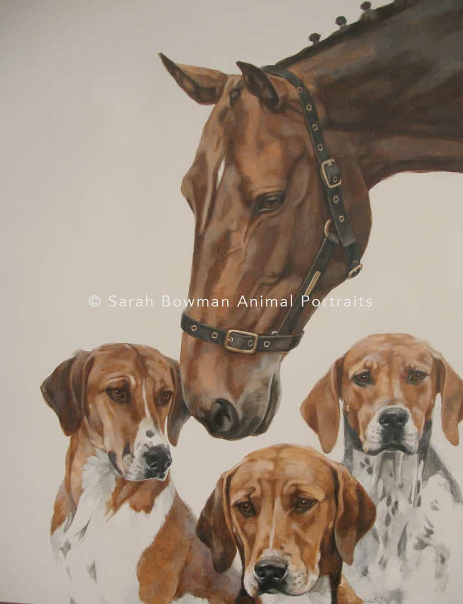 Horse and dog group animal portrait
