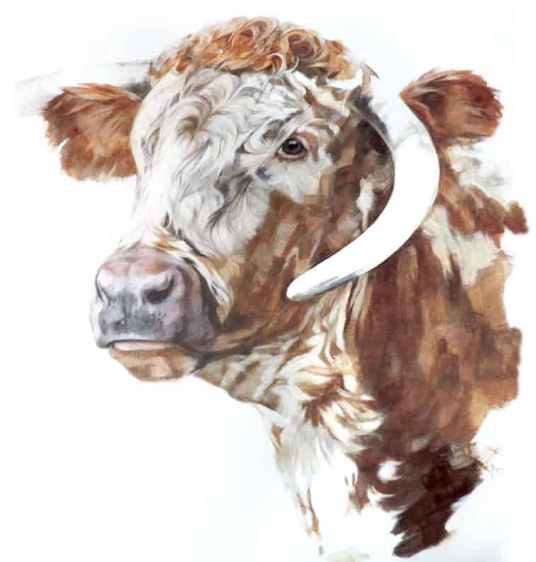 animal-portraits