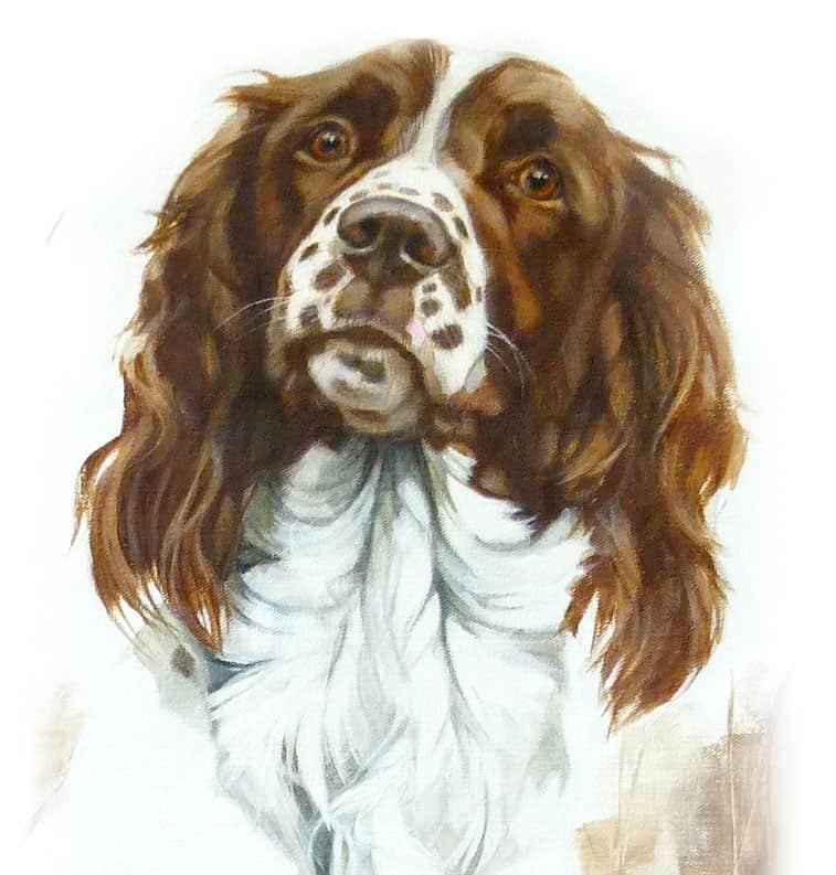 hand painted dog portraits
