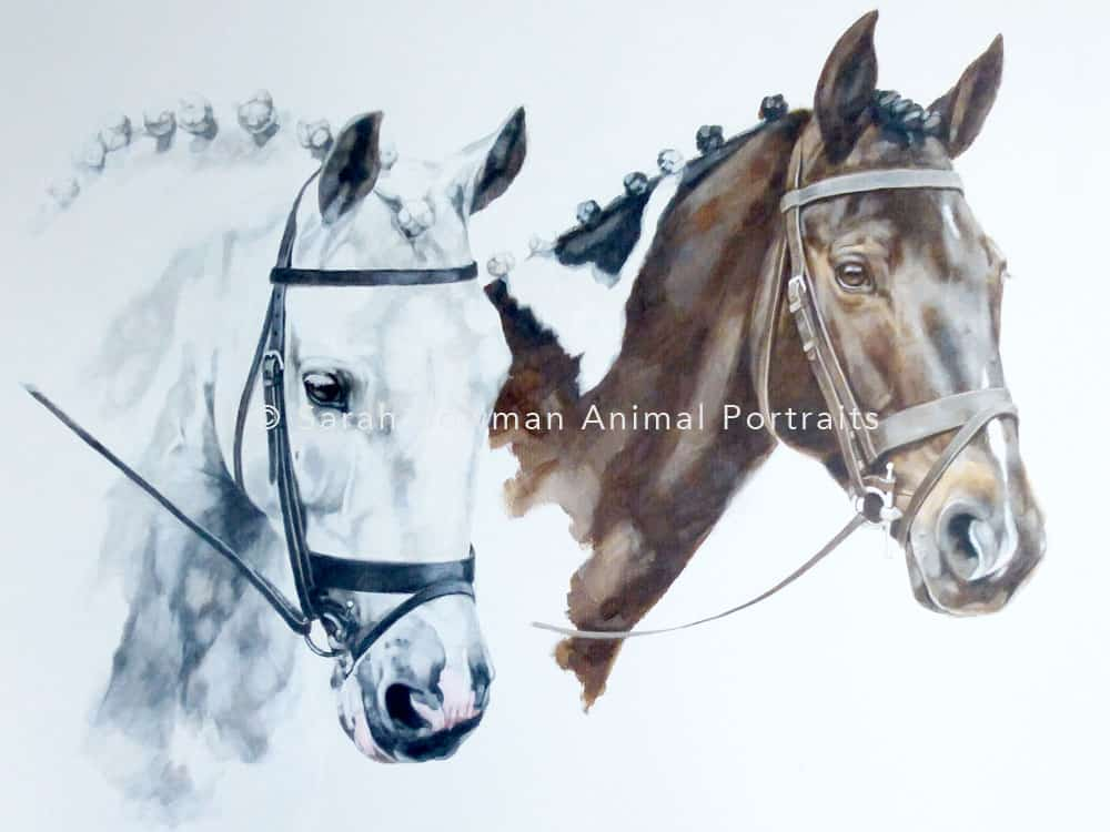 pair of horse portraits