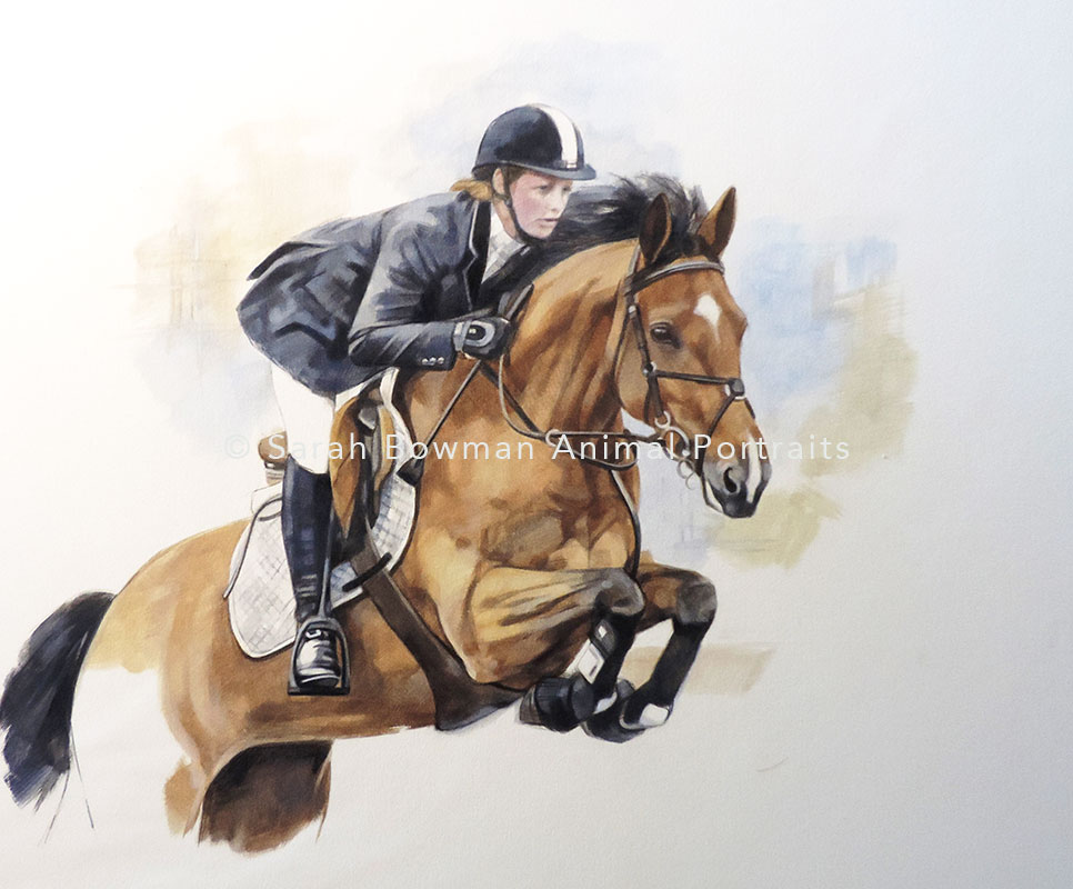 horse portrait with rider